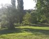 Campo en En Venta